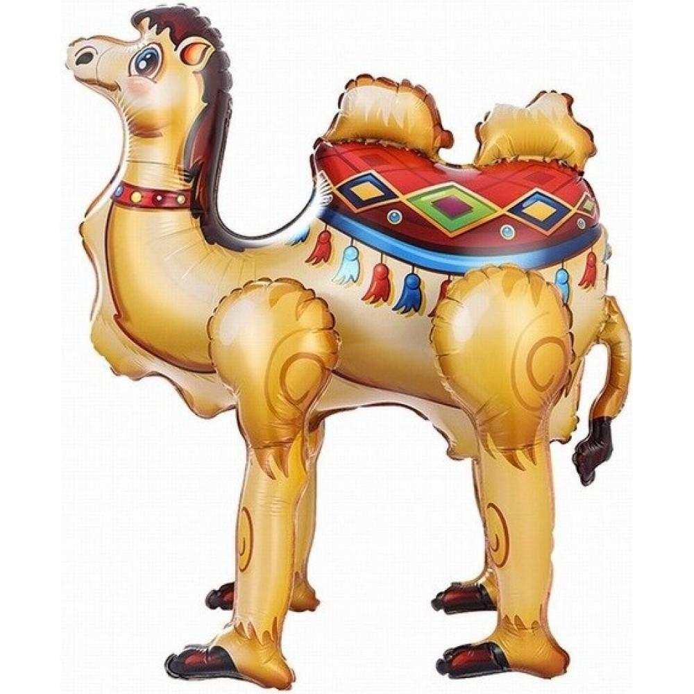 Kamielis, Staigaiošs, (69 cm)