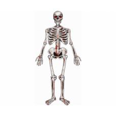 Karājas dekorēšana, Skelets, (135x42 cm)