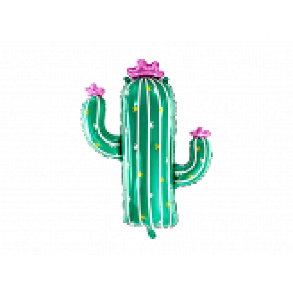 Kaktuss, (82 cm)